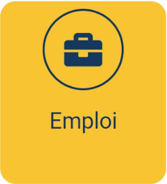 Mode d'emploi - Catégorie Emploi